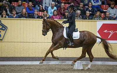 Uttagna hästar till unghäst-VM i dressyr