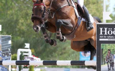 Uttagna hästar till Unghäst-VM i hoppning