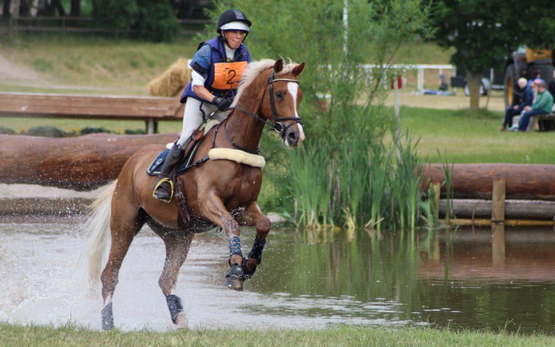 SWB-hästar till unghäst-VM i fälttävlan